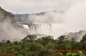 Iguazu2821