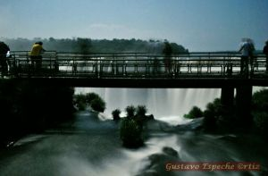 Iguazu2911
