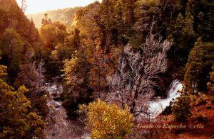 Reserva Nant&Fall155